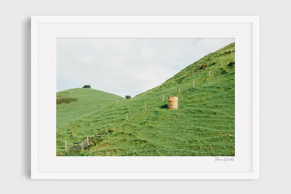 Photograph Great Ocean Road 8 - Solitude