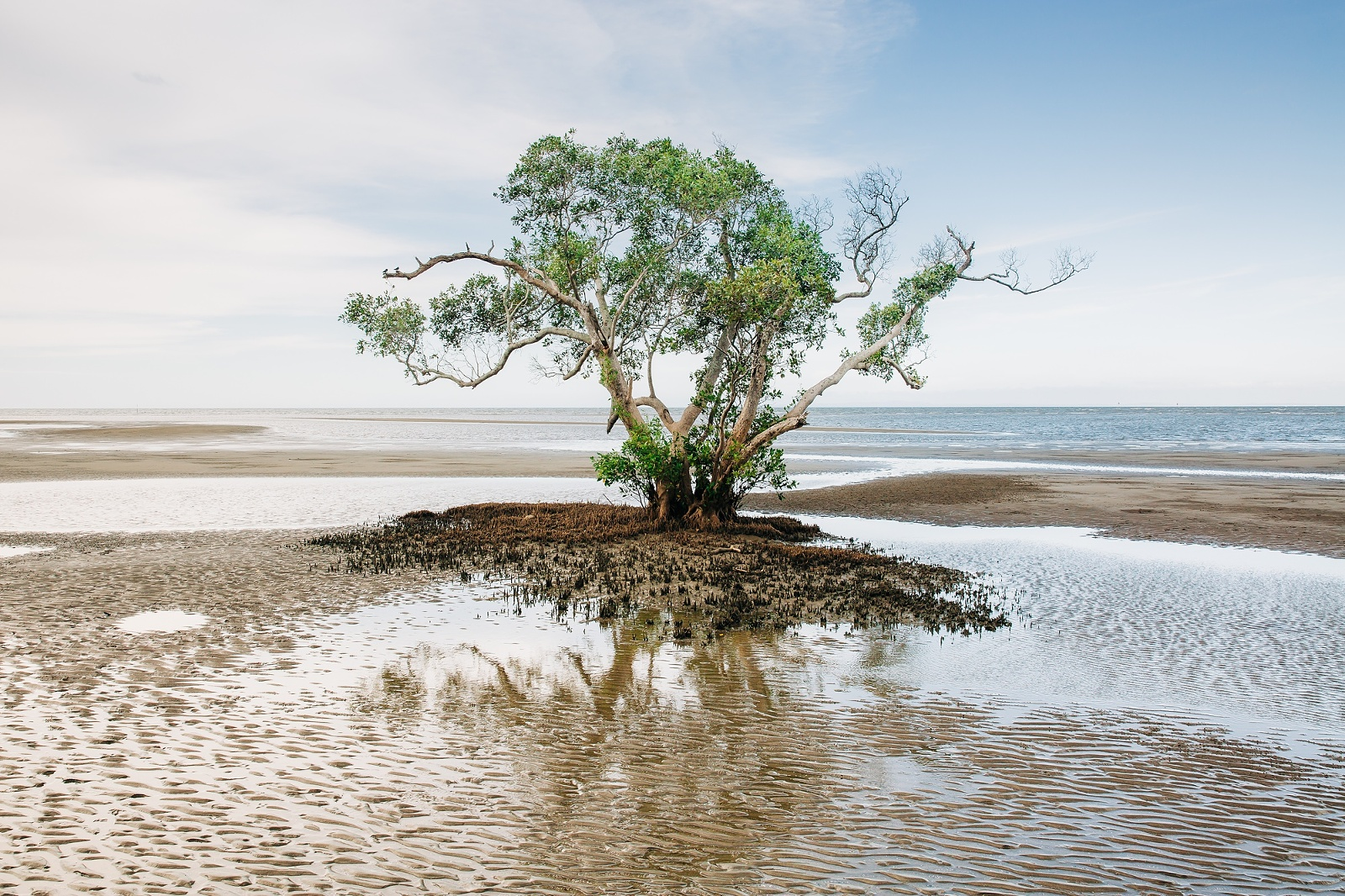 photograph Nudgee Beach 5 - Escape