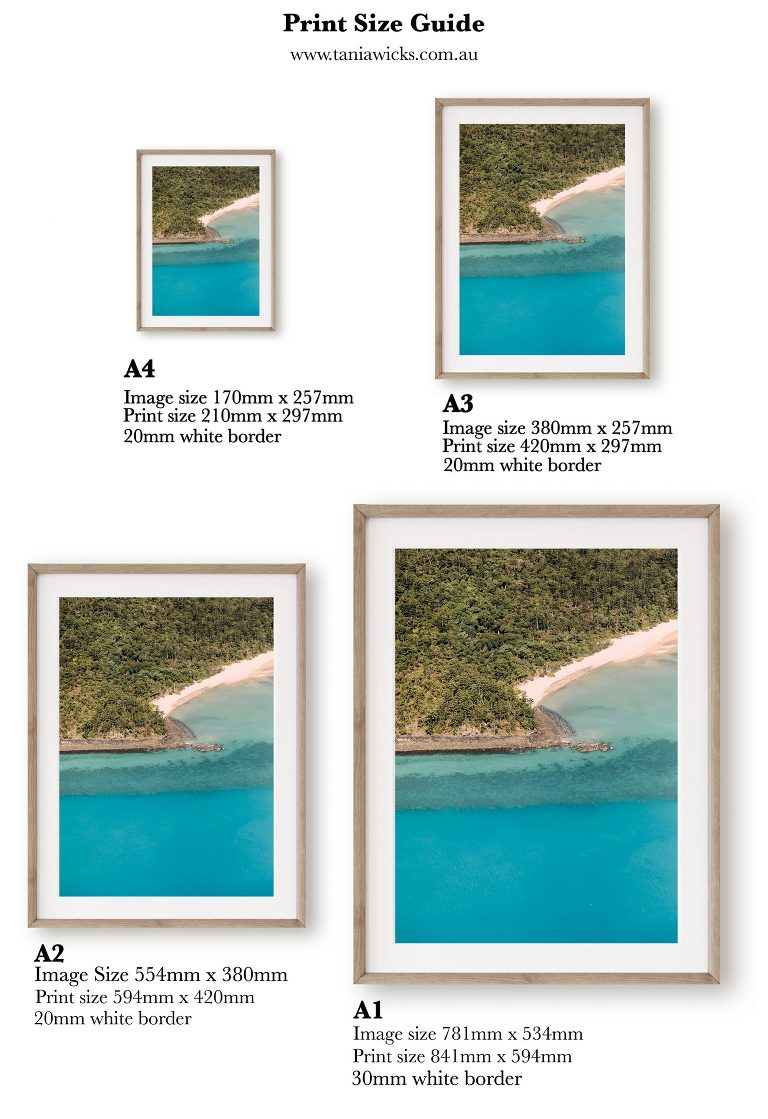 Vertical Print Size Guide
